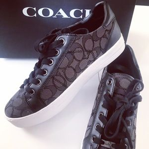 COACH Paddy Sneakers 👟